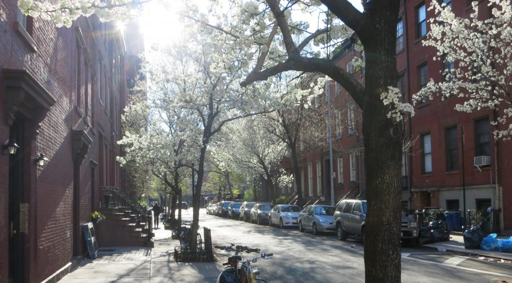 a street in the Upper East Side of Manhattan, New York City, complete with flowering trees