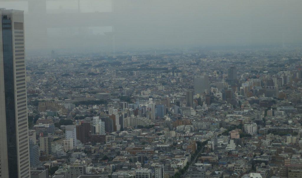 general urban sprawl as seen from Tokyo City Hall
