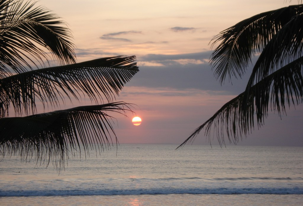 Paradise to me is palm trees, watching the sunset over the water with a cocktail in hand! This photo was taken in Bali.