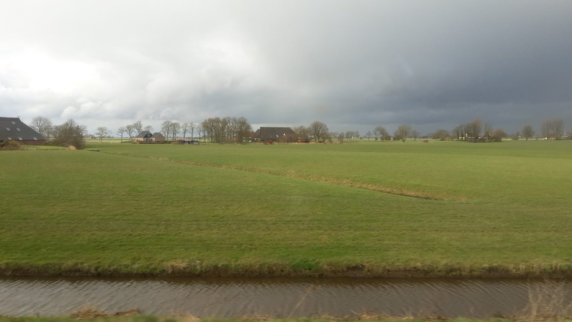 a rainy day somewhere on my commute between Groningen and Leeuwarden. Notice that fields are not delineated by fences, but rather by water-filled ditches.