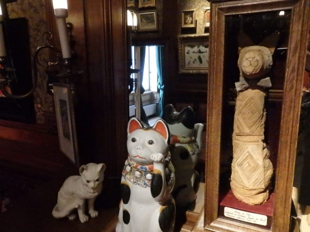 The mummified cat in the small case keeps company with some decidedly newer ceramic cats. Cat Cabinet, Amsterdam