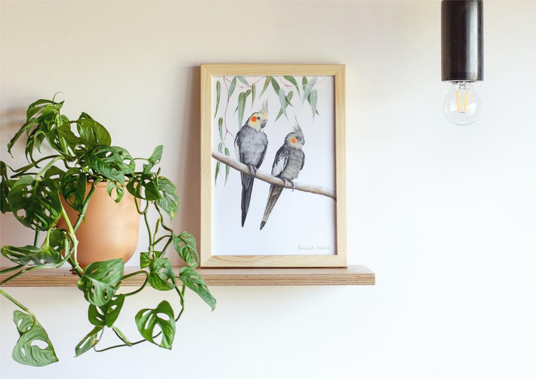 Cockatiels – Example of Framed Fine Art Print