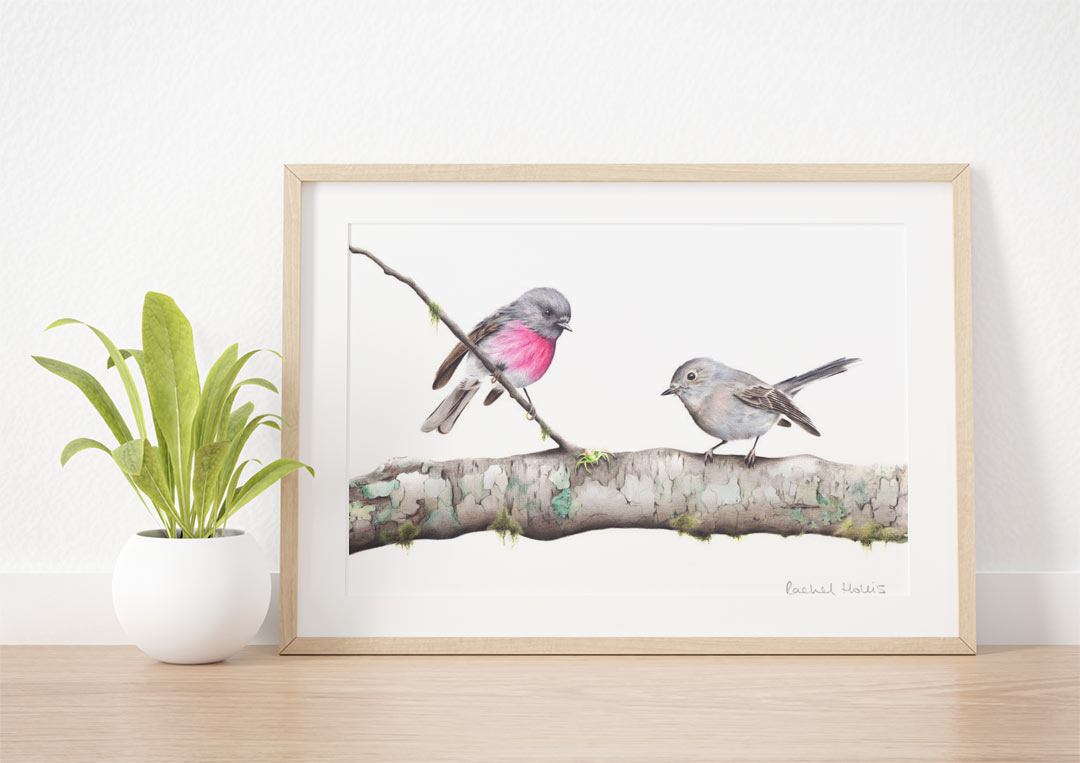 Rose Robins – Example of Framed Fine Art Print