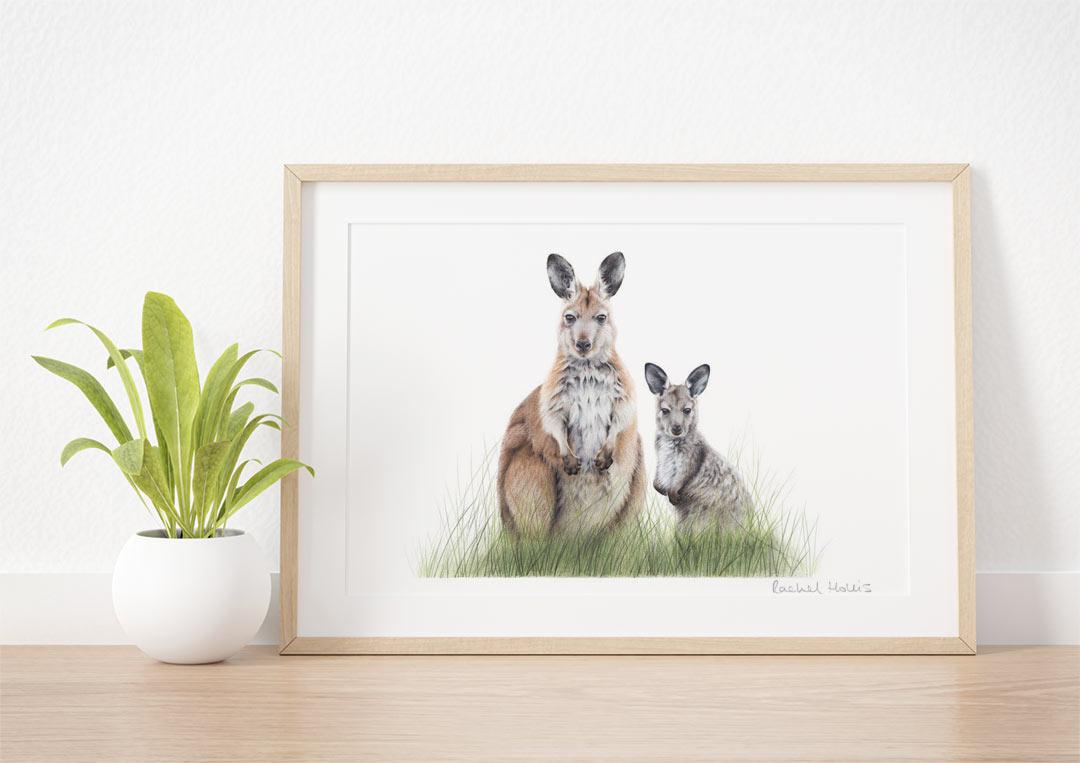 Common Wallaroo & Joey – Example of Framed Fine Art Print