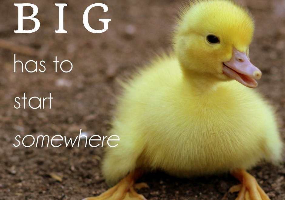Big has to Start Somewhere – don't despise small beginnings…