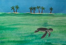A baby green turtle leaving home