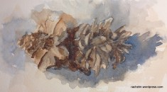 watercolor of double pinecones