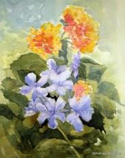 watercolor painting of blue and orange/yellow flowers
