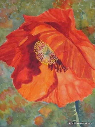 Red Hot! watercolor painting of poppy by Rachel Murphree