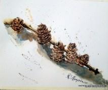 pinecone_parade_murphree