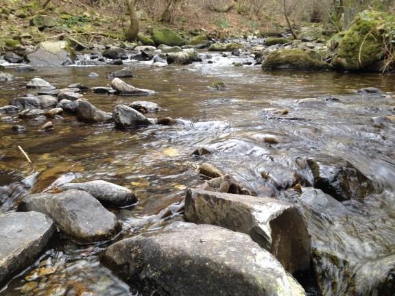 Nant y Coed upstream