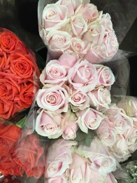I can never go past roses