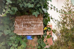 Alsace Wine Route: Around town #2
