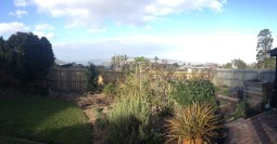 The view from my mother-in-law's backyard (soon to be built-out, sadly)