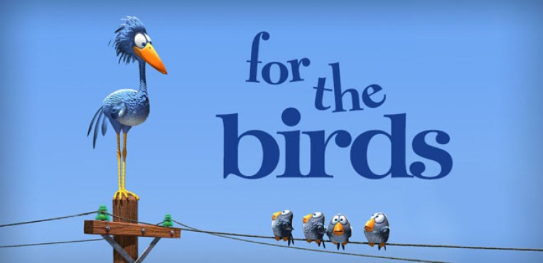 for the birds5