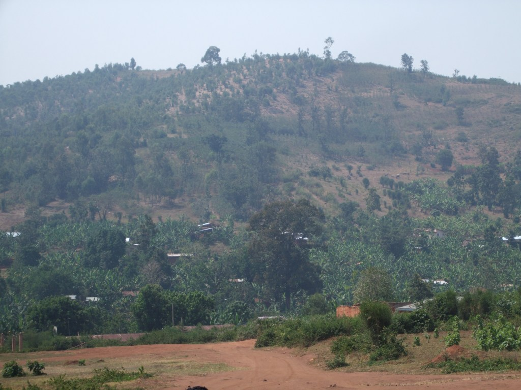 a typical hill: there is no unused land