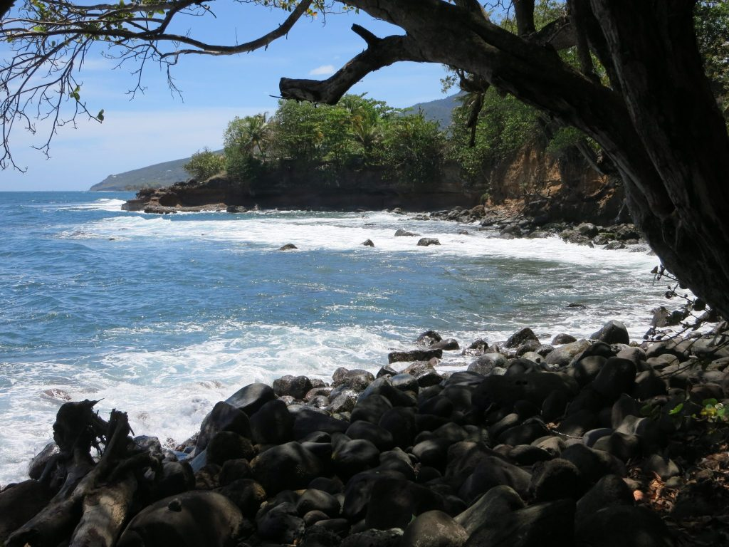 a view of the coast near Trois-Rivieres, Guadeloupe