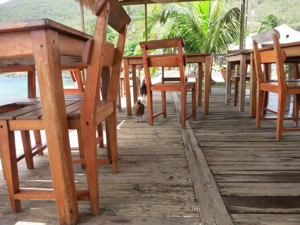 View of the restaurant used in Death in Paradise, empty except for some chickens.