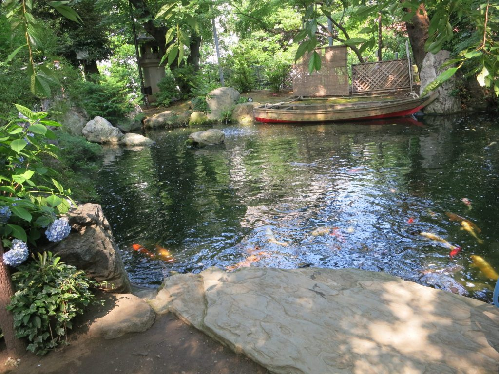 pond with koi outside Atago-Jinja Temple in Tokyo