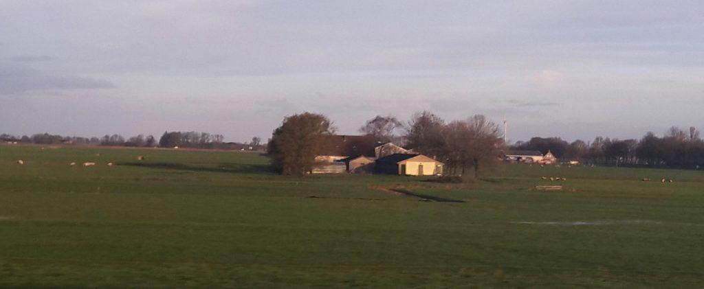 Farmland scene from the train window
