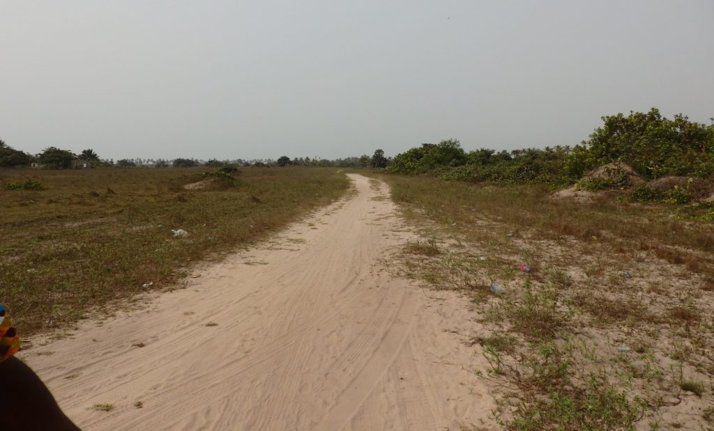 The path to the Point of No Return in Badagry, Nigeria, as it looks today. When the slaves made this journey, the path would have been narrower and surrounded by forest.