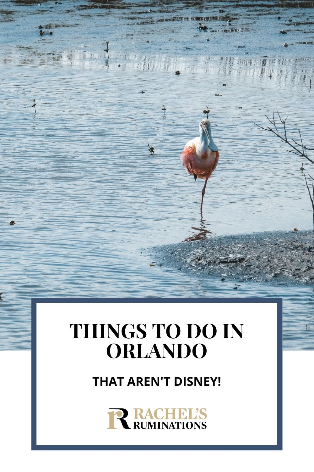 """What's the first word that pops into your head when you hear the word """"Orlando""""? Unless you're an Orlando Bloom fan, chances are you thought of Disney World. Click here to read about 8 other things to do in Orlando besides Disney! via @rachelsruminations"""