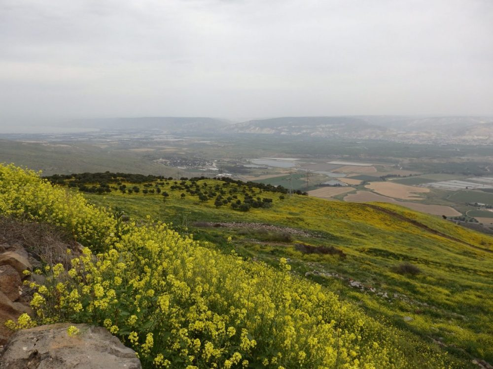 Even on the hazy day I visited, Belvoir Fortress offered a BIG view. On the left side of the photo you can dimly see the southern tip of the Sea of Galilee.