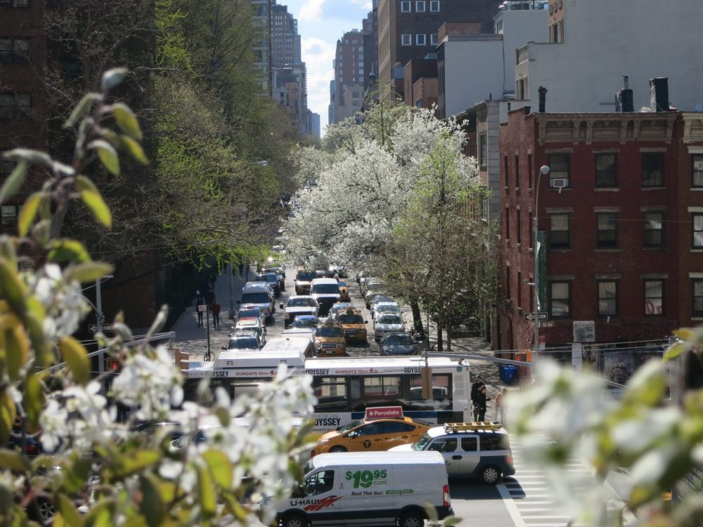 As seen from High Line Park, looking down a side street. Traffic crosses the picture right to left, and a line of traffic extends up a side street up the middle of the photo. The street is lined with buildings into the distance, but mostly obscured by trees along the street.