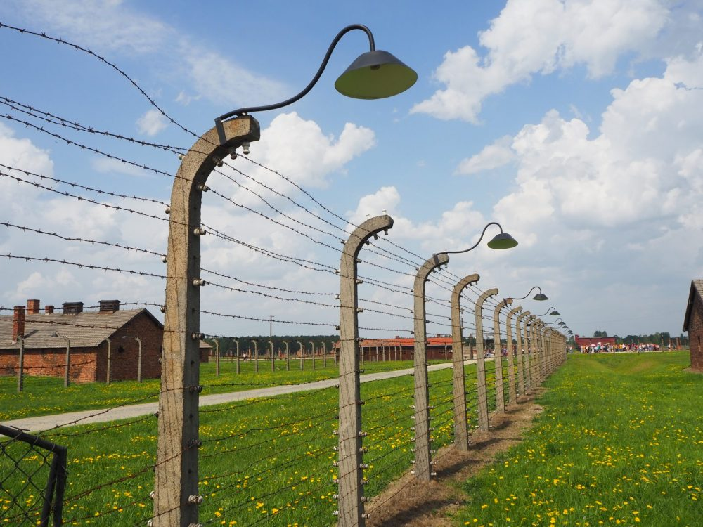 Barbed wire fencing at Auschwitz II Birkenau. The uprights are concrete and curve at the top. Every few uprights has a lamp attached, that sticks out and is pointed downwards. The fence crosses a green field, and a few buildings (barracks, I think) are visible in the distance behind the fence.