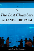 Lost Chambers 3
