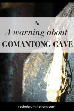 Gomantong Cave 1
