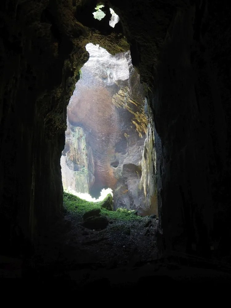 The light filters into Gomantong Cave from various openings. Those openings are how the bats and swiftlets get in and out too.
