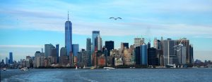 A New York City skyline. The tallest visible building is the new World Trade Center tower among many other towers. A seagull flies nearby in the middle heading toward the camera.