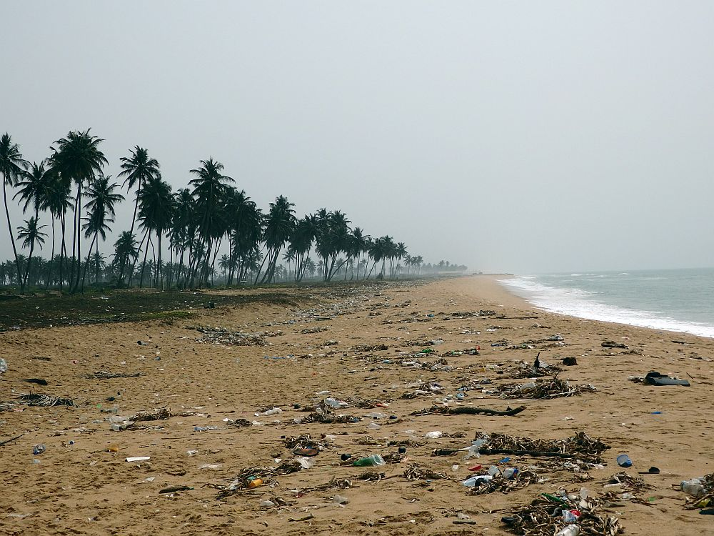 The beach extends straight ahead, with a row of tall palm trees along the left and the edge of the ocean on the right. The waves aren't huge but the edge of the water is white with foam. The sand down the center of the picture is light brown and strewn with trash (many plastic bottles) and dead seaweed and leaves.