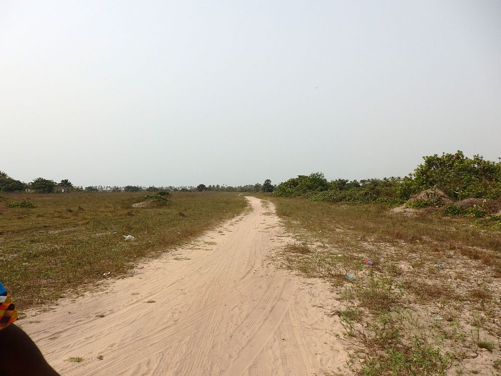 The path is sandy and goes straight into the distance. On either side is low scrubby brownish grass.
