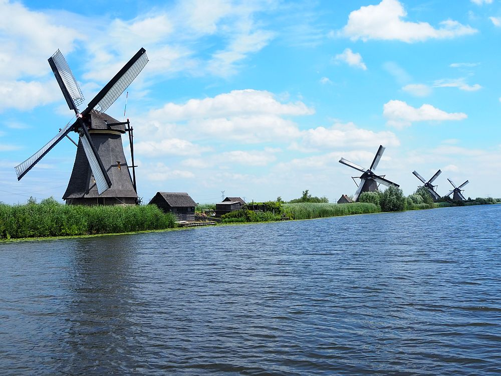 A view of four large windmills along the edge of a wide canal. Each has thatch on its roof and the vanes have white sails on them that fill with wind.