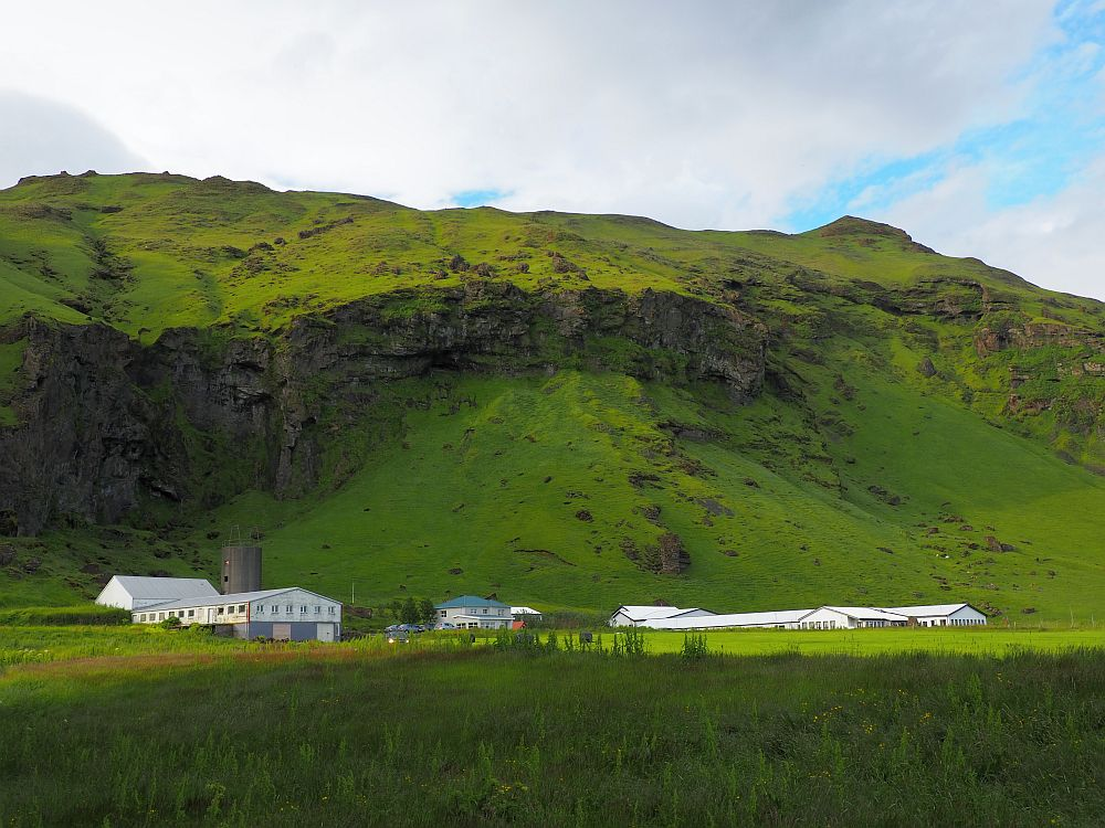 A wide grass-covered mountain. In front of it, several buildings. The one on the left is white and has a lot of windows and is probably a barn. The middle one looks like a suburban house: gray with a blue roof. The right-hand one is only partly visible due to curvature of the land in front of it. It is a long low building with a white roof. All of the buildings look small in front of the mountain.