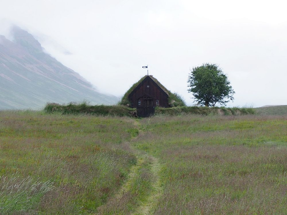 In a grassy field, the low grass-covered church stsands alone, surrounded by a low grass-covered wall, and with one lonely tree beside it. It has no steeple, just the steeply slanted roof that almost reaches the ground on both sides. The front is brown wood.
