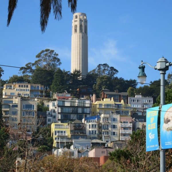 North Beach neighborhood guide: A local's favorite things to do