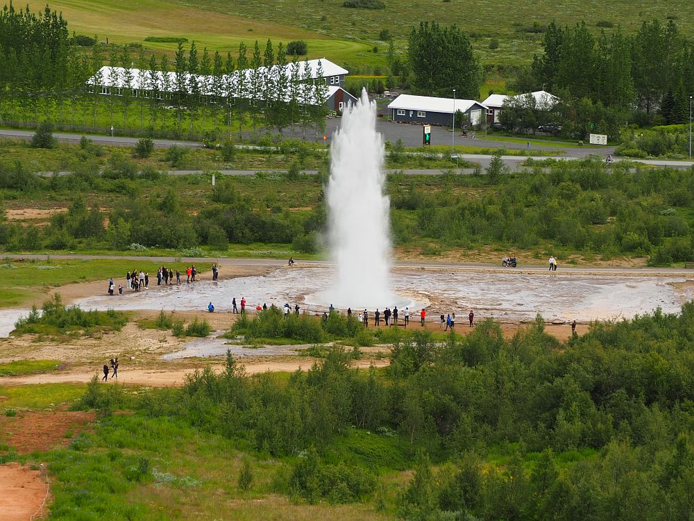 Seen from up a hill, the geyser rises quite high and white. The people watching around the pool at the base look quite small from this distance.