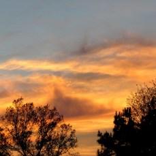 walk sunset