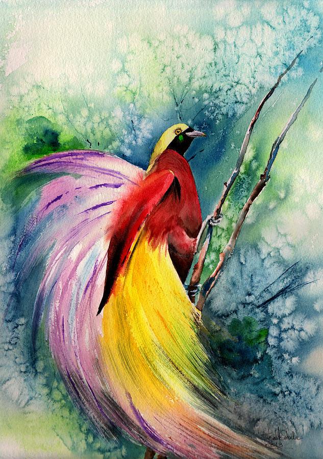 bird of paradise new guinea isabel salvador