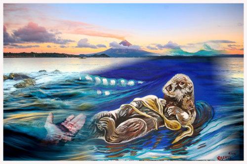 seadog2