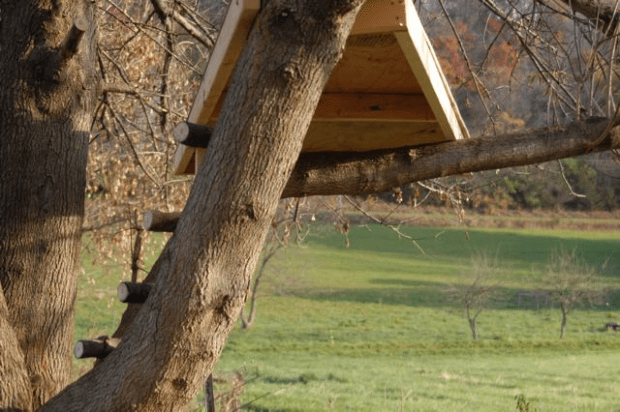 Her own tree house: project-based homeschooling