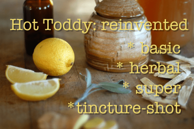 Hot Toddy: reinvented {for cold season}
