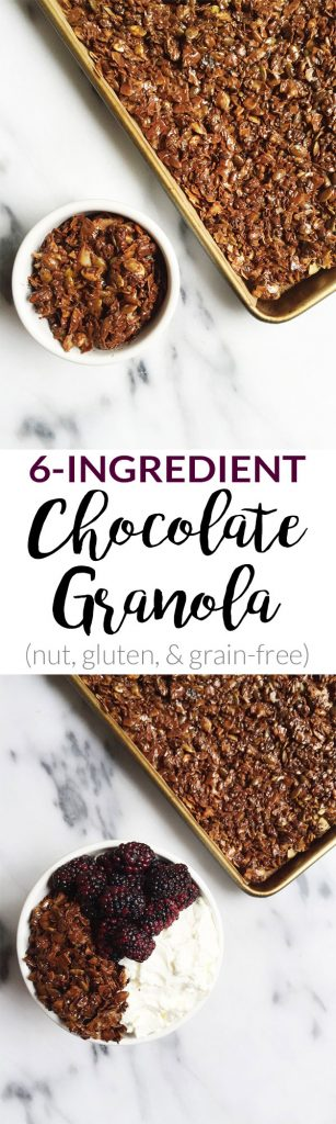6-ingredient Chocolate Granola
