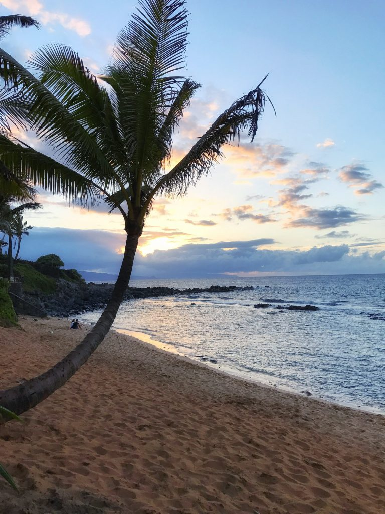 Travel Guide to Maui