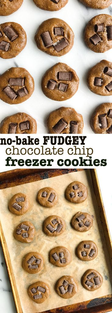 Fudgey No-Bake Chocolate Chip Freezer Cookies for a delicious vegan and grain-free dessert!