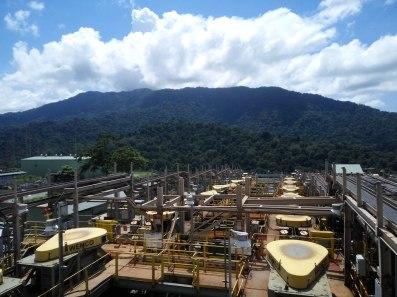 lihat Hutan di balik wilayah pabrik Concentrator. semuanya alami dan tidak terganggu proses produksi #newmontbootcamp