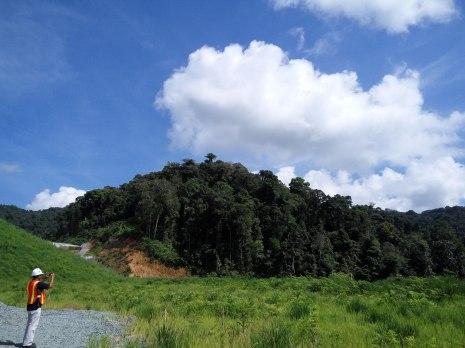 Lihat Hutan baru itu ! ditanam sekitar tahun 2008, dibelakangnya lagi ada hutan alami dan awal bukit hijau muda itu hasil reklamasi tahun 2015 #newmontbootcamp